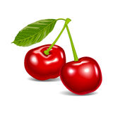 Cherry red aroma food fruit Stock Photos