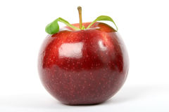 Cherry red summer apple isolated on white Stock Photography