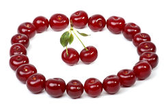 Cherry relations Stock Photography