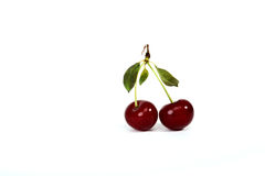 Cherry relations Stock Photos