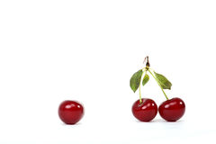 Cherry relations Royalty Free Stock Image