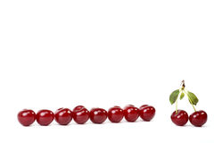 Cherry relations Royalty Free Stock Images