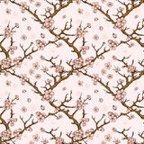 Cherry or sakura seamless pattern background Royalty Free Stock Images