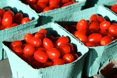 Cherry Salad Tomatoes Royalty Free Stock Photo