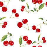 Cherry Seamless Pattern Stock Photos