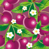 Cherry seamless pattern. Raster version of vector cherry background (seamless pattern Royalty Free Stock Photography