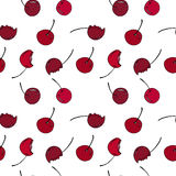 Cherry seamless pattern by hand drawing on white backgrounds. Stock Photos