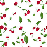 Cherry seamless pattern. Vector texture for textile. Wrapping, wallpapers and other surfaces stock illustration