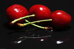 Cherry selection. Scene natural food Stock Photos