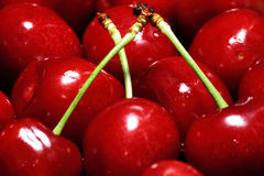 Cherry selection. Scene natural food Stock Photo