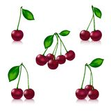 Cherry set on a white background with reflection royalty free illustration