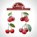Cherry Set der frischen Frucht, ganz, halb und mit Blatt gebissen Auch im corel abgehobenen Betrag Getrennt vektor abbildung