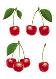 Cherry set. Third version. Simplified Stock Images