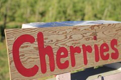 Cherry sign background Stock Photography