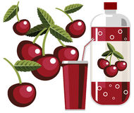 Cherry soda vector illustration