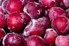 Cherry som sött frysas Royaltyfria Foton