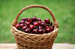 Cherry. Some beautiful sweet cherry fruit in basket stock images