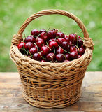 Cherry. Some beautiful sweet cherry fruit in basket royalty free stock images