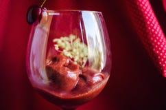 Cherry sorbet Stock Photo