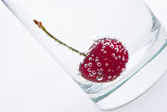 Cherry in sparkling water Stock Image