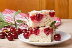 Cherry sponge slice Stock Image