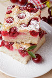 Cherry sponge slice Stock Photography