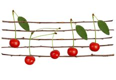Cherry staff Stock Images
