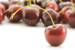 Cherry stand. Single cherry stands out from the rest royalty free stock photography