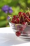 Cherry still life Stock Photo