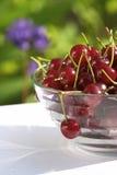 Cherry still life stock photo
