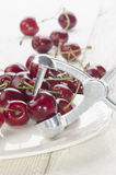 Cherry stone remover and cherries Royalty Free Stock Photo