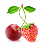 cherry and strawberry Royalty Free Stock Image