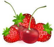 Cherry With Strawberry. Vector Royalty Free Stock Photos