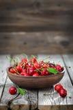 Cherry Stock Photos