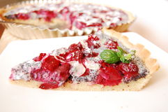 Cherry tart Royalty Free Stock Photos