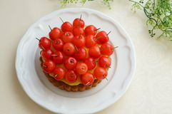 Cherry Tart Stock Image