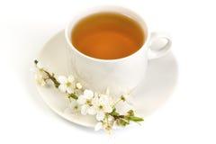 Cherry tea in a white mug Stock Image