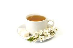 Cherry tea in a white mug Royalty Free Stock Photo