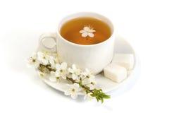 Cherry tea in a white mug Stock Photography