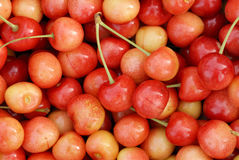 Cherry texture. Colorfull texture of the cherrys Stock Image