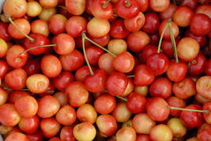 Cherry texture Royalty Free Stock Image