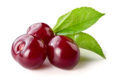 Cherry. Three berries isolated on white royalty free stock photography