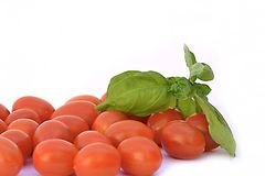 Cherry tomat and basil. Red cherry tomat with basil Royalty Free Stock Image