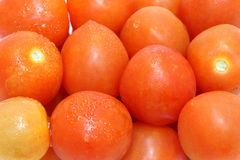 Cherry tomato. With water droplets Royalty Free Stock Photo