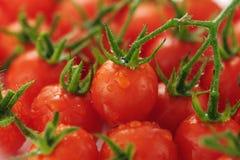 Cherry tomato. Fresh red cherry tomato is piled Stock Photography