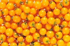 Cherry tomato. Stock Photo