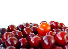 Cherry and tomato Stock Photography