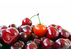 Cherry tomato. And cherries look similar Royalty Free Stock Photo