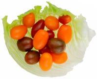 Cherry Tomato, Foto de archivo libre de regalías