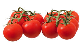 Cherry Tomato immagini stock